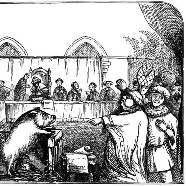 medieval-animal-court-trials