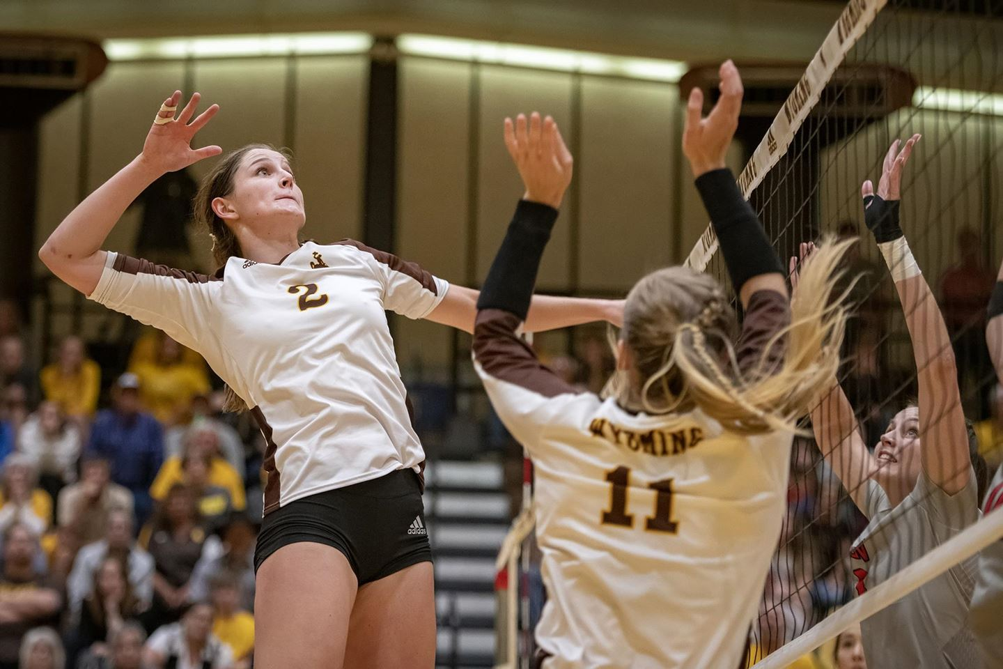 Cowgirls McBride Earns MW Volleyball Offensive Player of Week Honors - Sports Illustrated