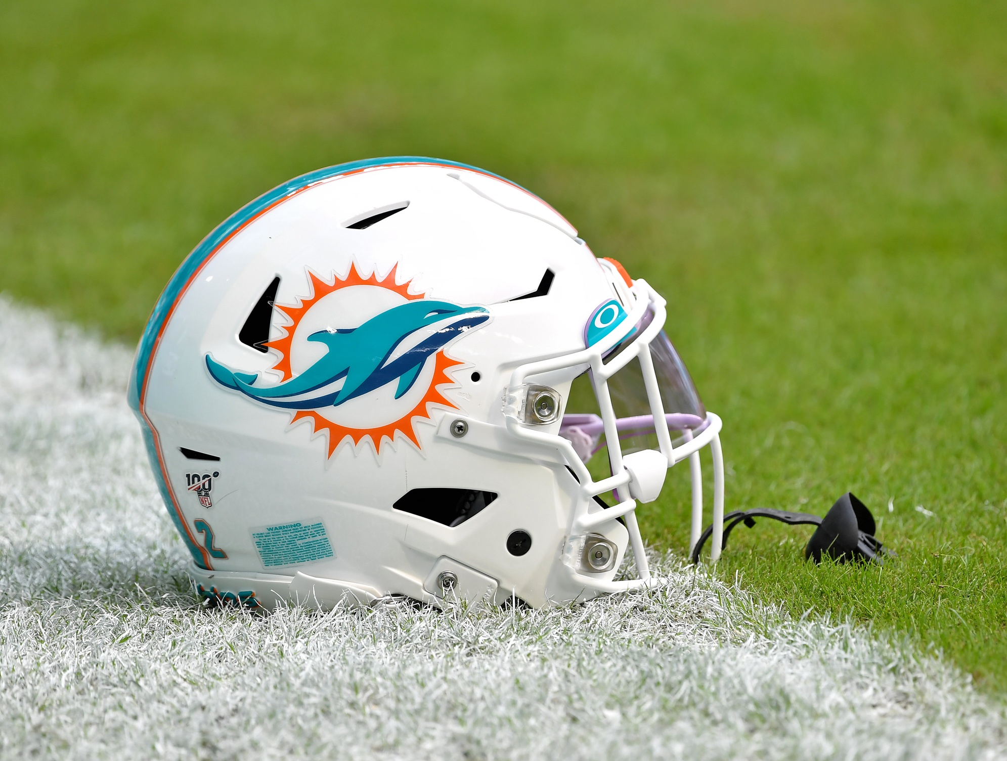 Five Things to Know About the Miami Dolphins