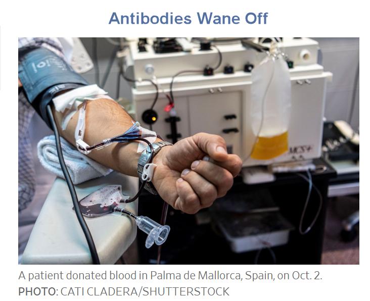 antibodies wane off