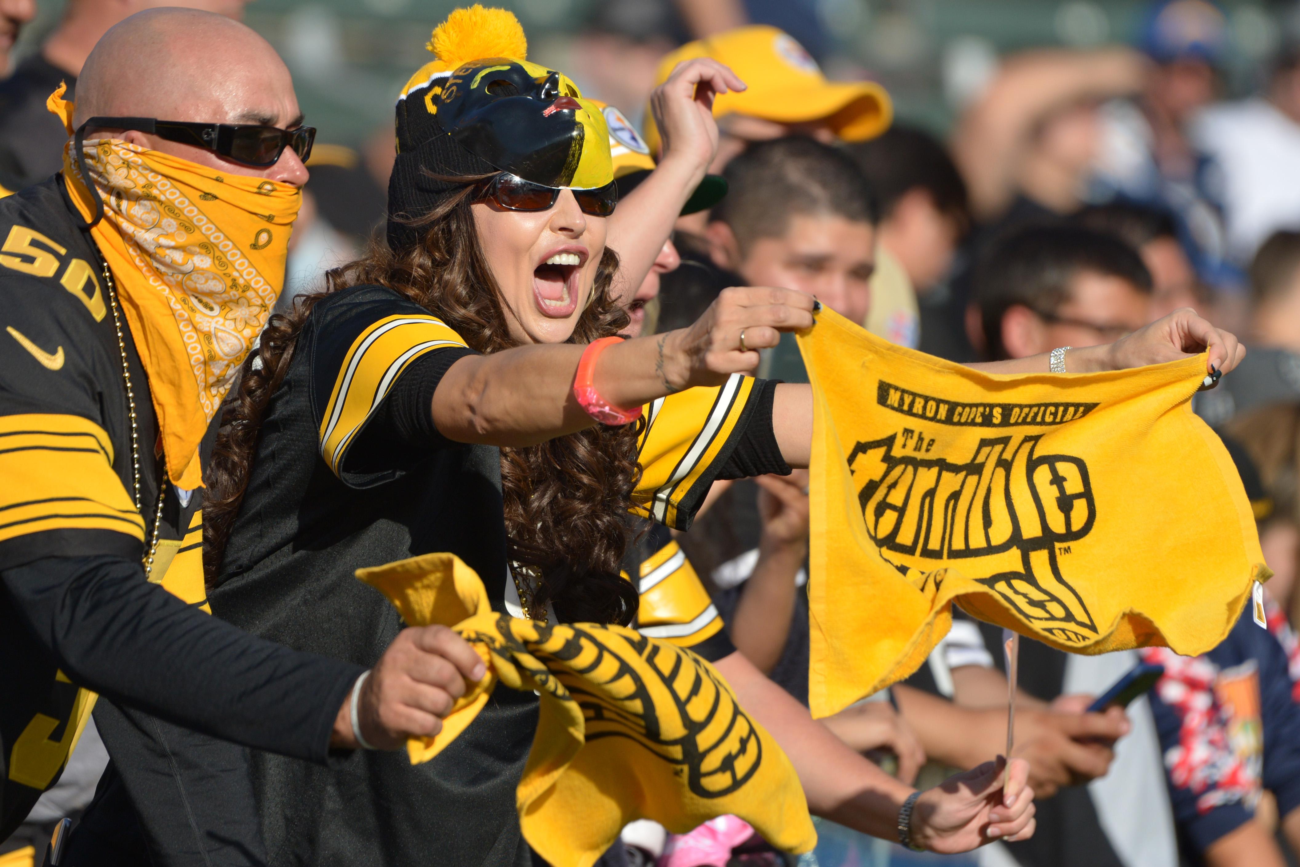Steelers Among Teams Extending Season Ticket Payments