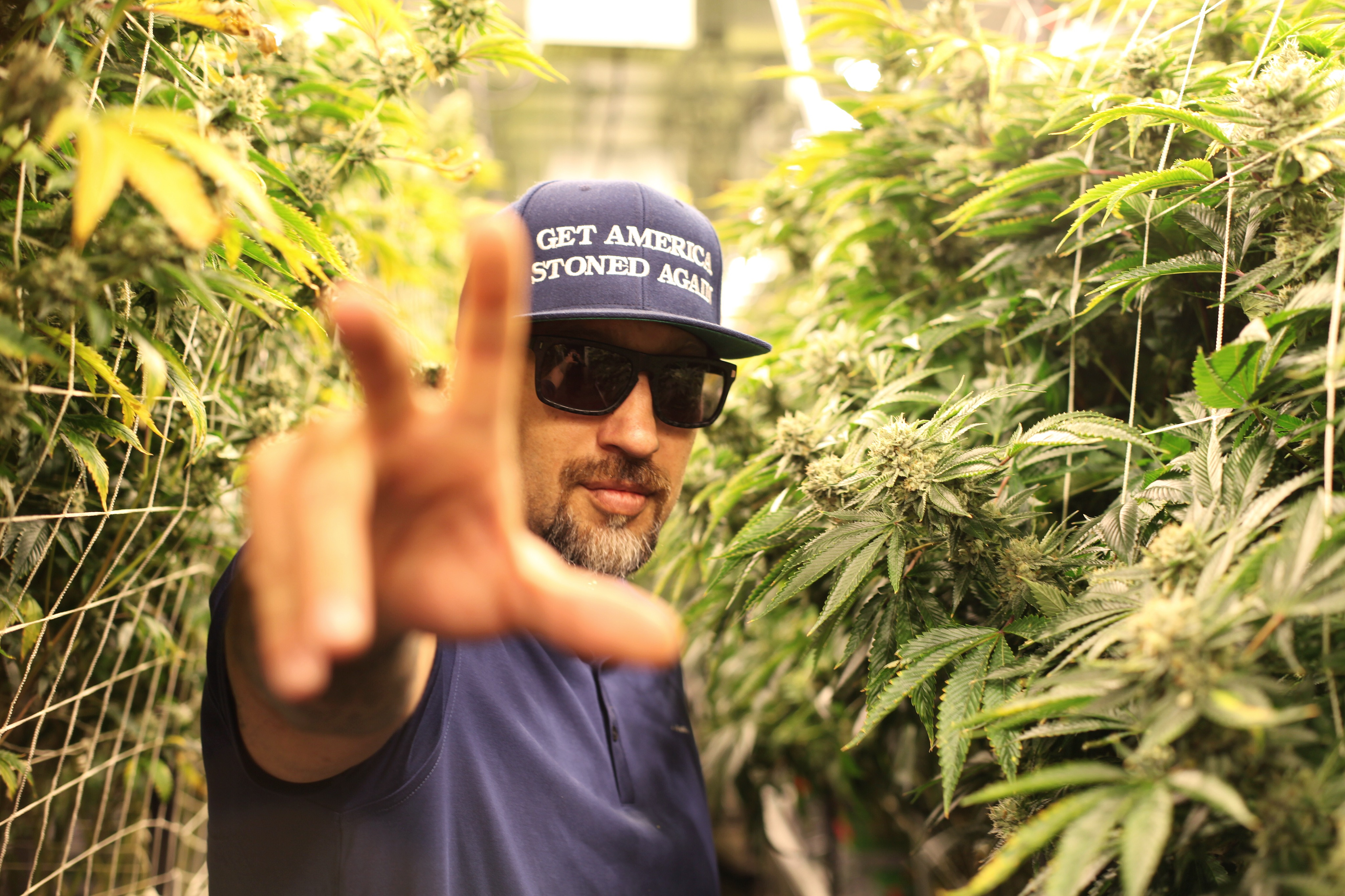 B-Real Lists Favorite Weed Strains On His 50th Birthday