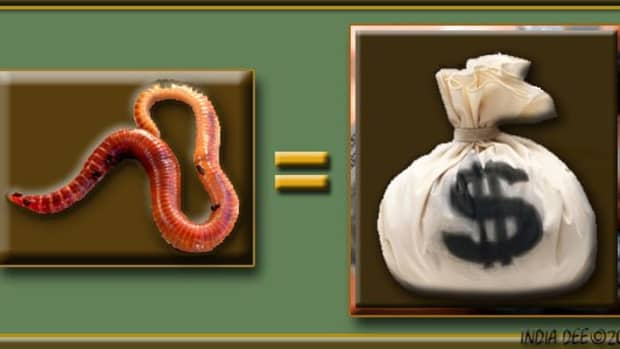 earthworms-a-new-and-easy-way-for-raising-worms-for-profit
