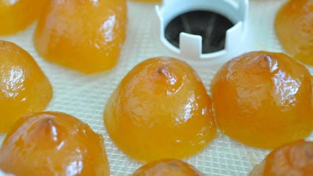 candied-citrus-peel