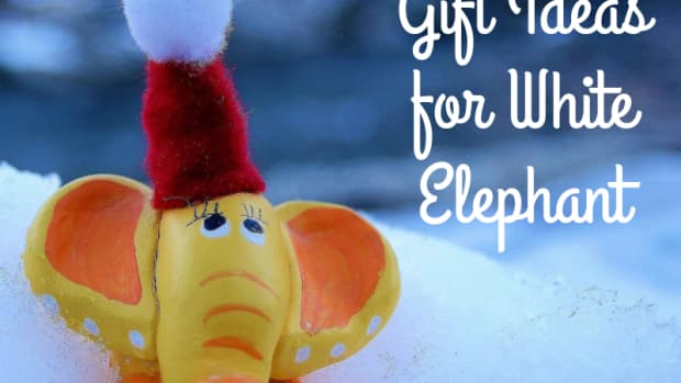 white-elephant-gift-ideas-for-gift-exchange