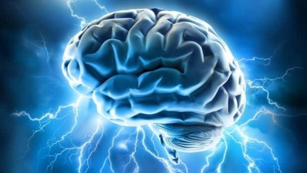 cognition-memory-emotion