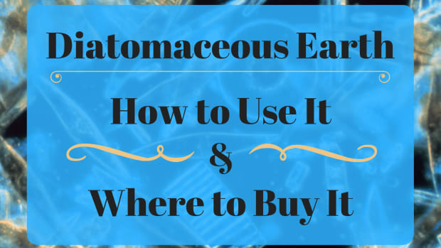 diatomaceous-earth-how-to-use-them-and-where-to-buy-them