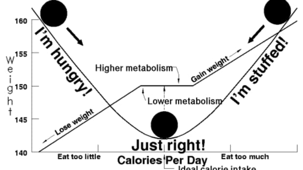 weight-watchers-points-plus-calculator