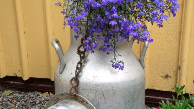 a-vintage-garden-a-garden-with-quality-re-use-and-recycle-old-things-in-you-vintage-garden