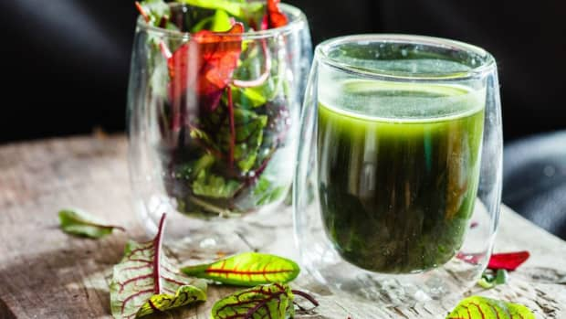 best-electric-wheatgrass-juicers