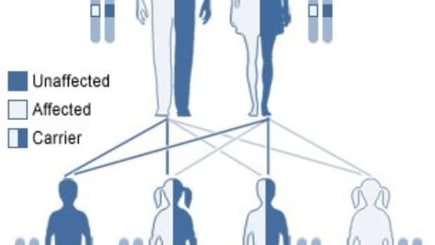 the-heterozygote-advantage-examples-of-disease-causing-genes-that-give-humans-an-edge