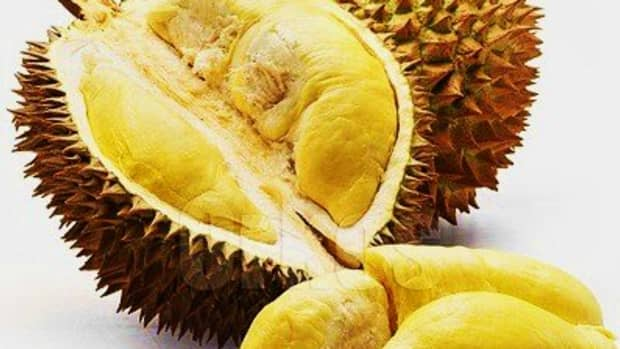 durian-the-king-of-fruits