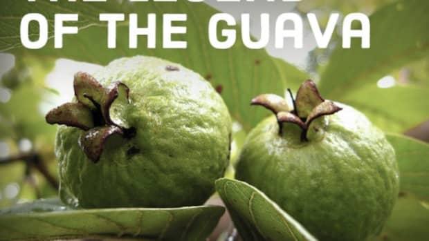 philippine-legend-the-legend-of-guava