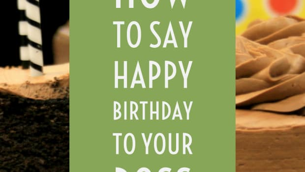 best-happy-birthday-messages