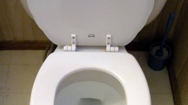 preventingtoiletclogs