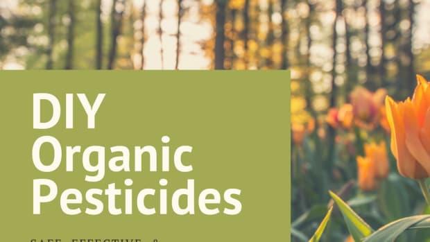 homemade-pesticides