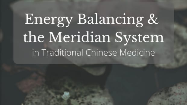 the-guide-to-the-12-major-meridians-of-the-body