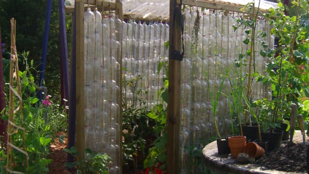 how-to-build-a-greenhouse-made-from-plastic-bottles