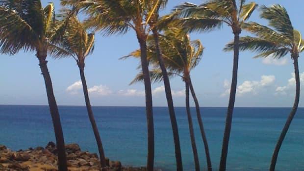 best-beaches-on-the-big-island-of-hawaii