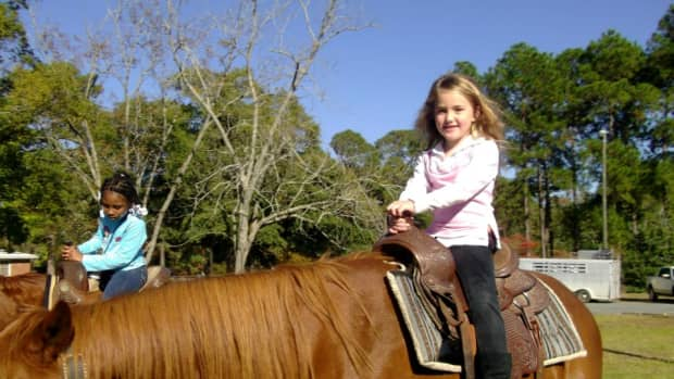 child-safety-with-horses-and-ponies