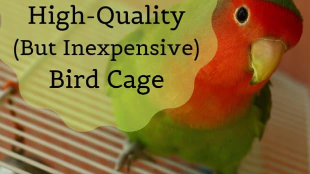 affordablebirdcages