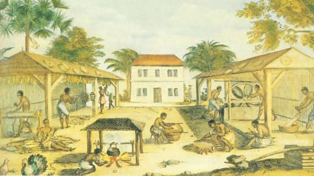 slavery-in-america-slave-codes-in-virginia-the-1705-virginia-slave-act