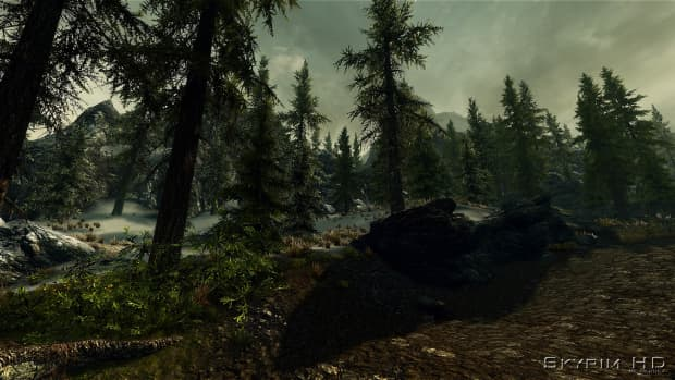how-to-use-nexus-mod-manager-to-download-install-uninstall-and-manage-skyrim-oblivion-morrowind-and-witcher-2-mods