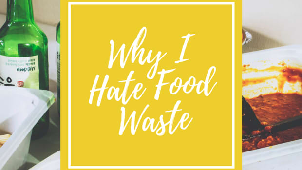 thinking-about-not-wasting-food