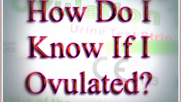 how-do-i-know-i-ovulated