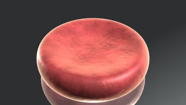 blood-type-properties