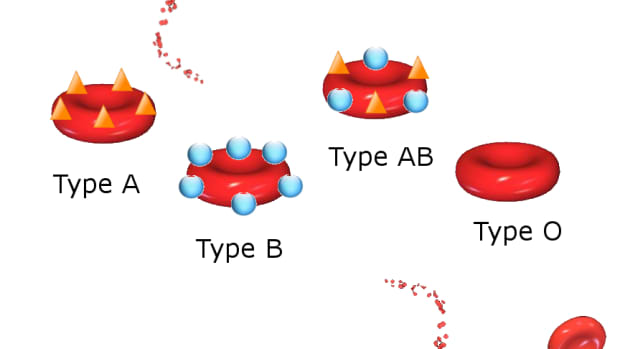 血液类型历史 - 遗传学 - 世界各地的百分比