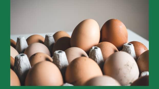 bloom-on-fresh-eggs-interesting-facts