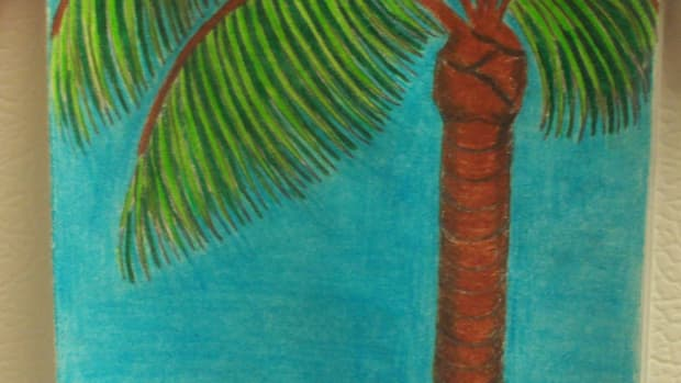 drawing-a-palm-tree-on-a-card