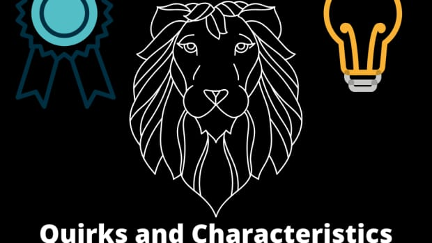 the-leo-personality-quirks-and-characteristics