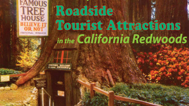 kitschy-roadside-tourist-attractions-in-the-california-redwoods