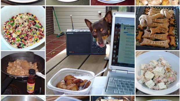 how-to-make-healthy-homemade-dog-food