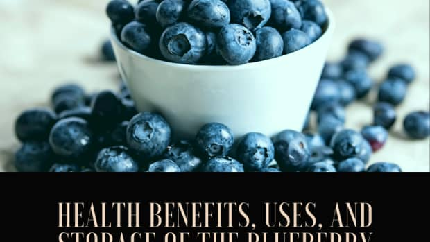 the-blueberry-health-benefits-storage-and-uses