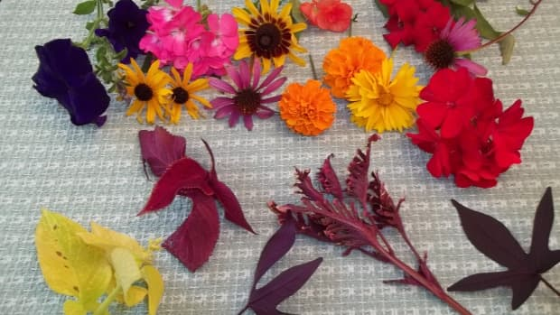 how-to-flower-pound-on-fabric