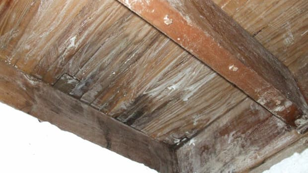 borax-on-wooden-joists-for-mold-treament