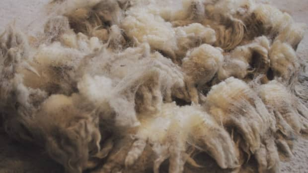 how-to-clean-raw-wool-for-needle-felting