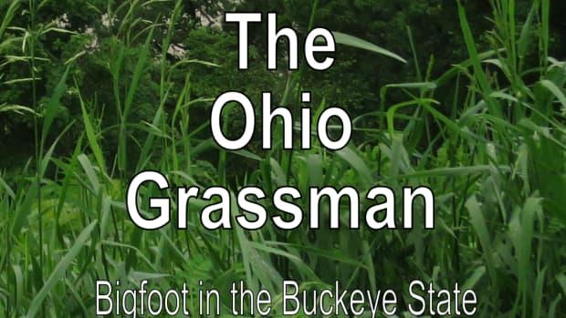 bigfoot-sightings-ohio-grassman