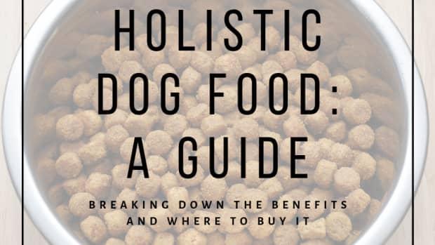 benefits-of-holistic-dog-food