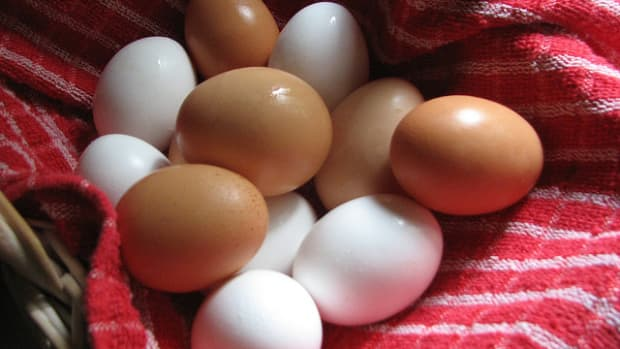 are-eggs-good-for-you-or-are-they-bad-for-you