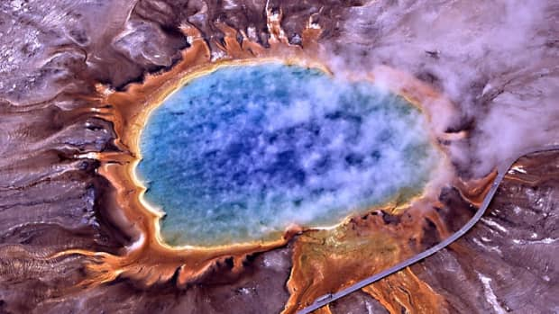unusual-bacteria-strange-facts-about-fascinating-microbes