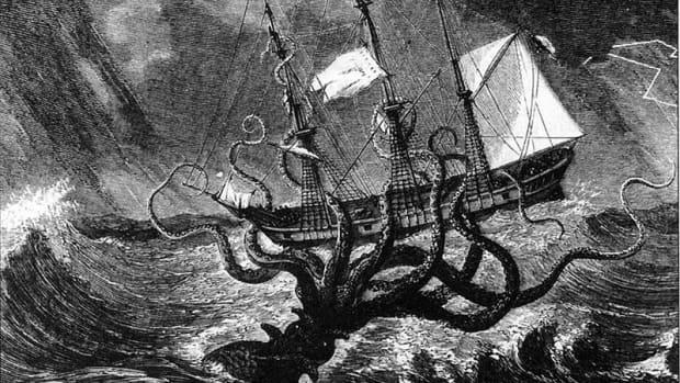 colossal-squid-vs-giant-squid-the-real-kraken-sea-monster