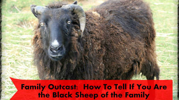 how-to-tell-if-you-are-the-black-sheep-of-the-family