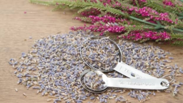 lavender-honey-and-clay-face-mask-recipe