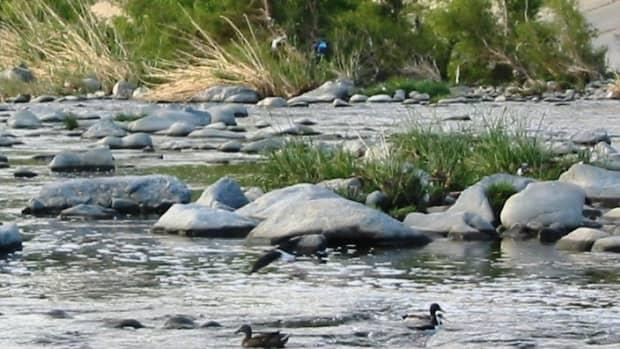 los-angeles-river-reconstruction-revitalization