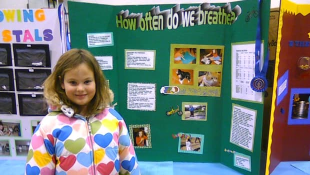easy-animal-science-fair-project-for-elementary-kids