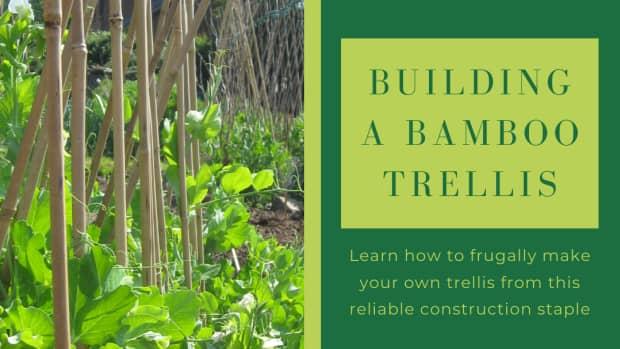 how-to-frugally-build-a-bamboo-garden-trellis